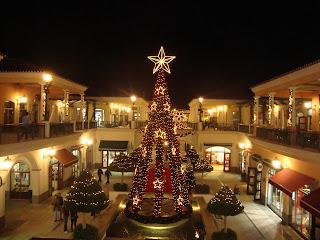 Big Christmas Tree photo in Campera - Carregado