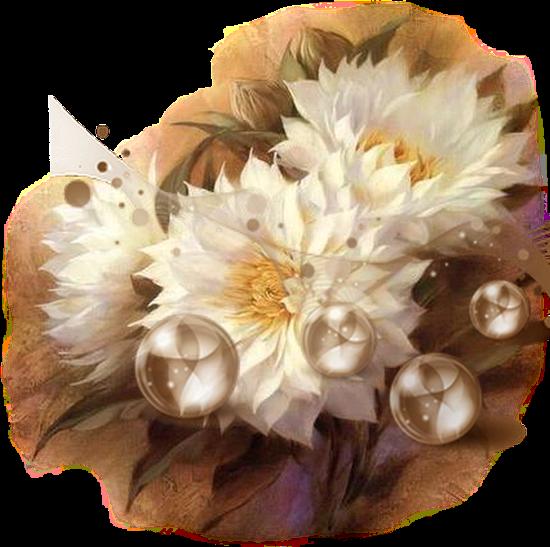 flores branca
