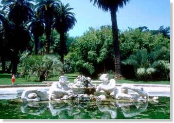 Fiori piante e giardini del mondo un orto botanico nel - Giardino delle ninfee ...