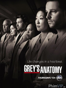 Ca Phẫu Thuật Của Grey 1 - Grey's Anatomy Season 1 poster