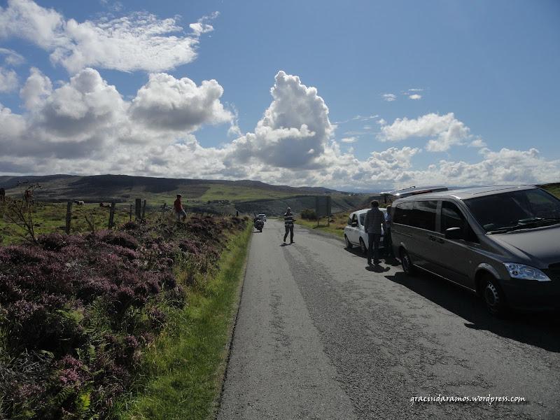 - Passeando até à Escócia! - Página 15 DSC04173