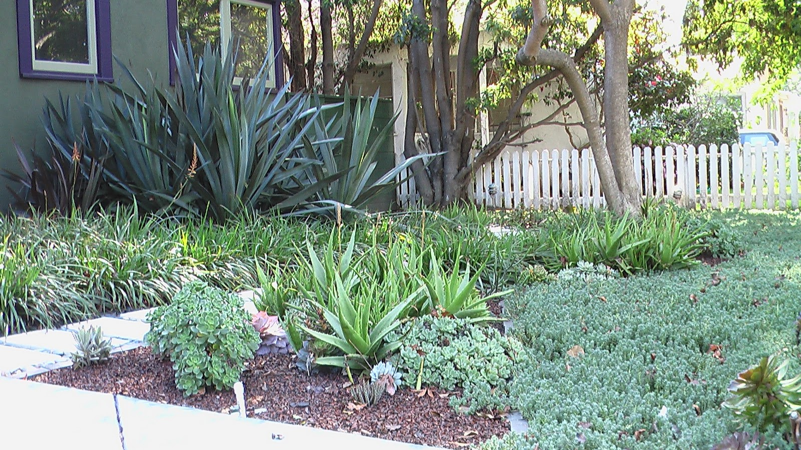 mar vista green garden showcase february 2011
