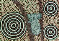 Koobor le Koala