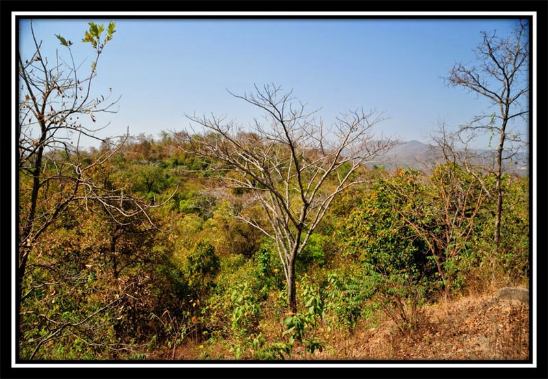 View from Latehar
