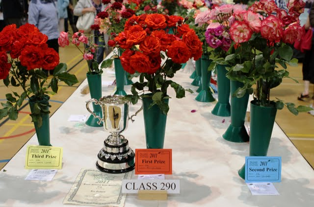 Leeds Flower Show 2013     –       Competitive Classes       –     now available to dowload