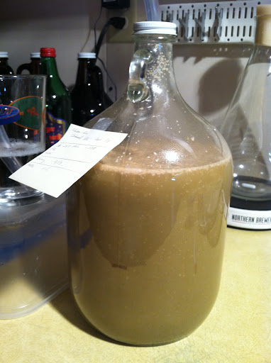 version 1.0 in the carboy