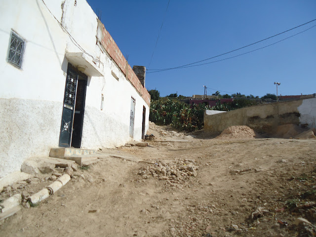 Marrocos 2011 - Página 3 DSC03630