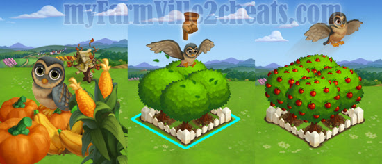 farmville 2 owl house farmville 2 cheats