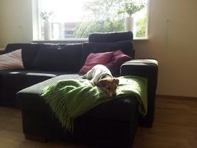 Ett stycke soffa och ett stycke Strössel på plats i huset