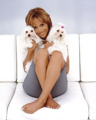 Halle Berry and two dogs