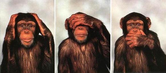 trois-singes.jpeg