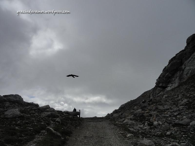 passeando - Passeando pelo norte de Espanha - A Crónica DSC03657