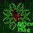 Samu The Frog avatar image