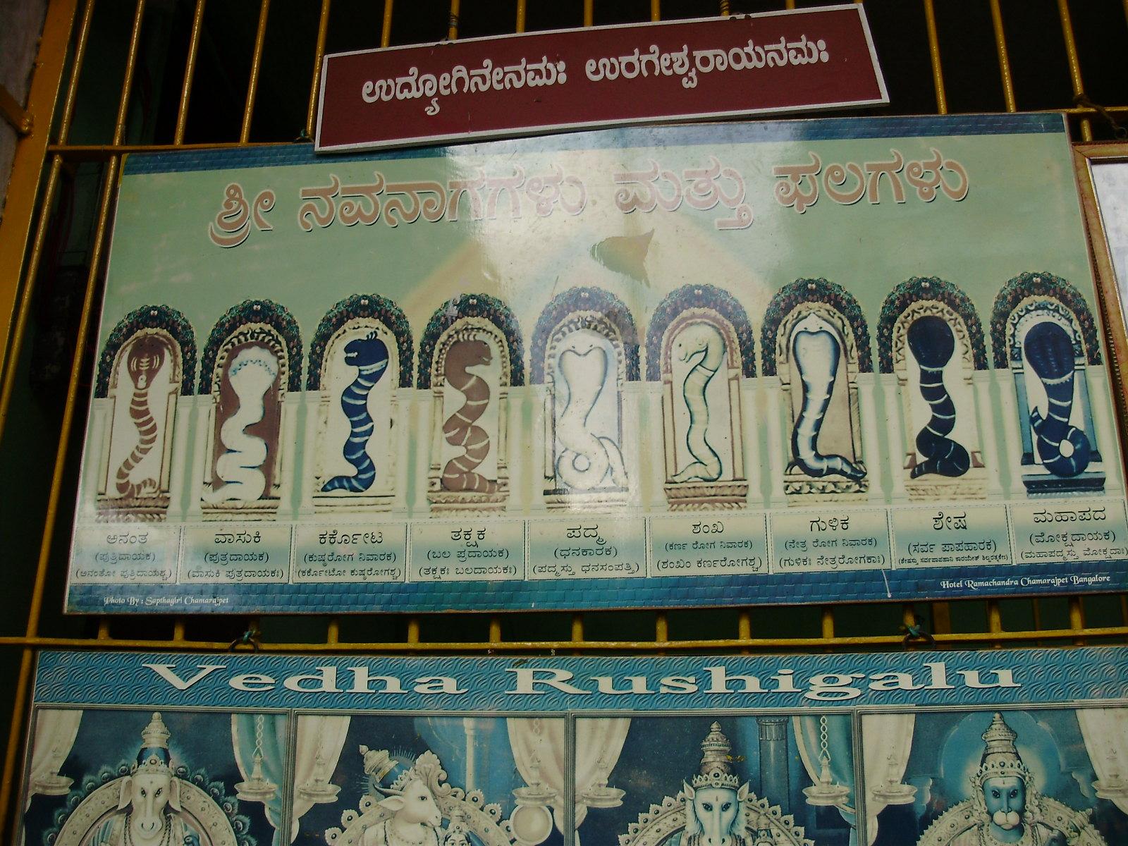 Helpful Tips on Sanatana Dharma / Hindu Principles - 66