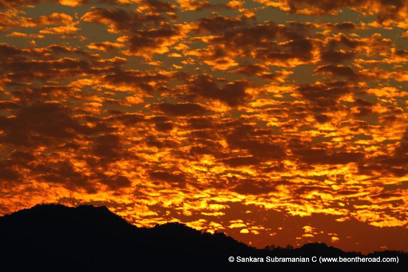 Vivid and Vibrant Evening Sky at Kaziranga - 3