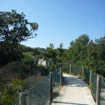 Concrete track to Little Congwong beach near La Perouse (308693)