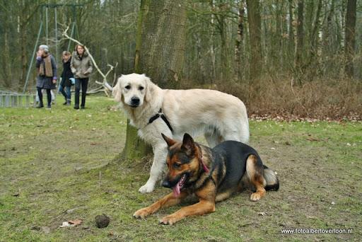 houthakkersmeewerkdag overloon 3-03-2012 (43).JPG