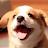 caleb collins avatar image