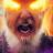 Jon Chrysler avatar image
