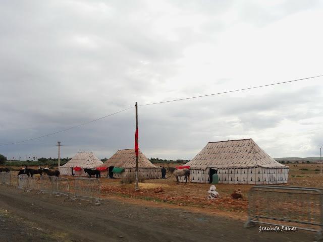 Marrocos 2012 - O regresso! - Página 4 DSC04897