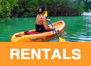 Key Largo Kayak Rental