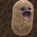 Ashley Barth's profile image