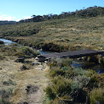 Bridge over the Thredbo River on the Cascade Trail (283502)