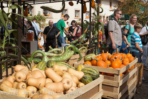 Hitscherhof Pumpkin Festival | World Traveling Military Family