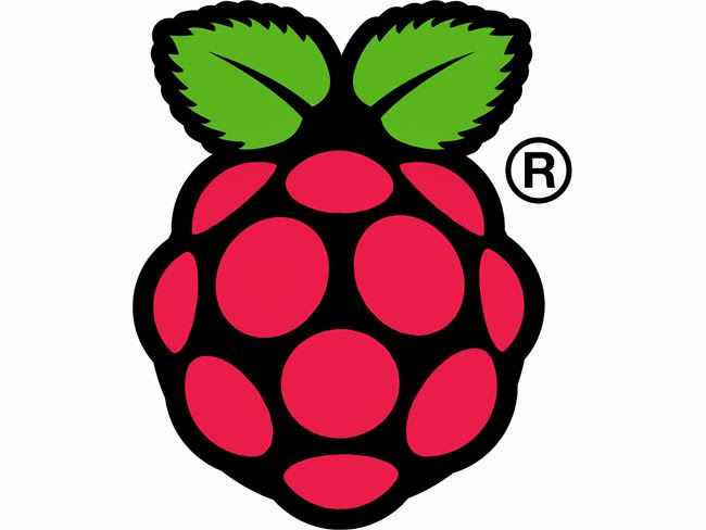 La privatizacion intenta conquistar la raspberry pi