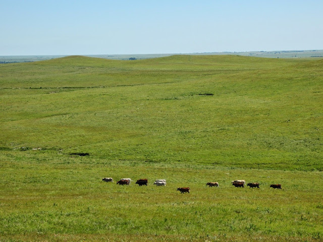 Tallgrass Prairie National Preserve. From 100 Places in the USA Every Woman Should Go