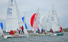 J/24 one-design sailboats- setting spinnakers