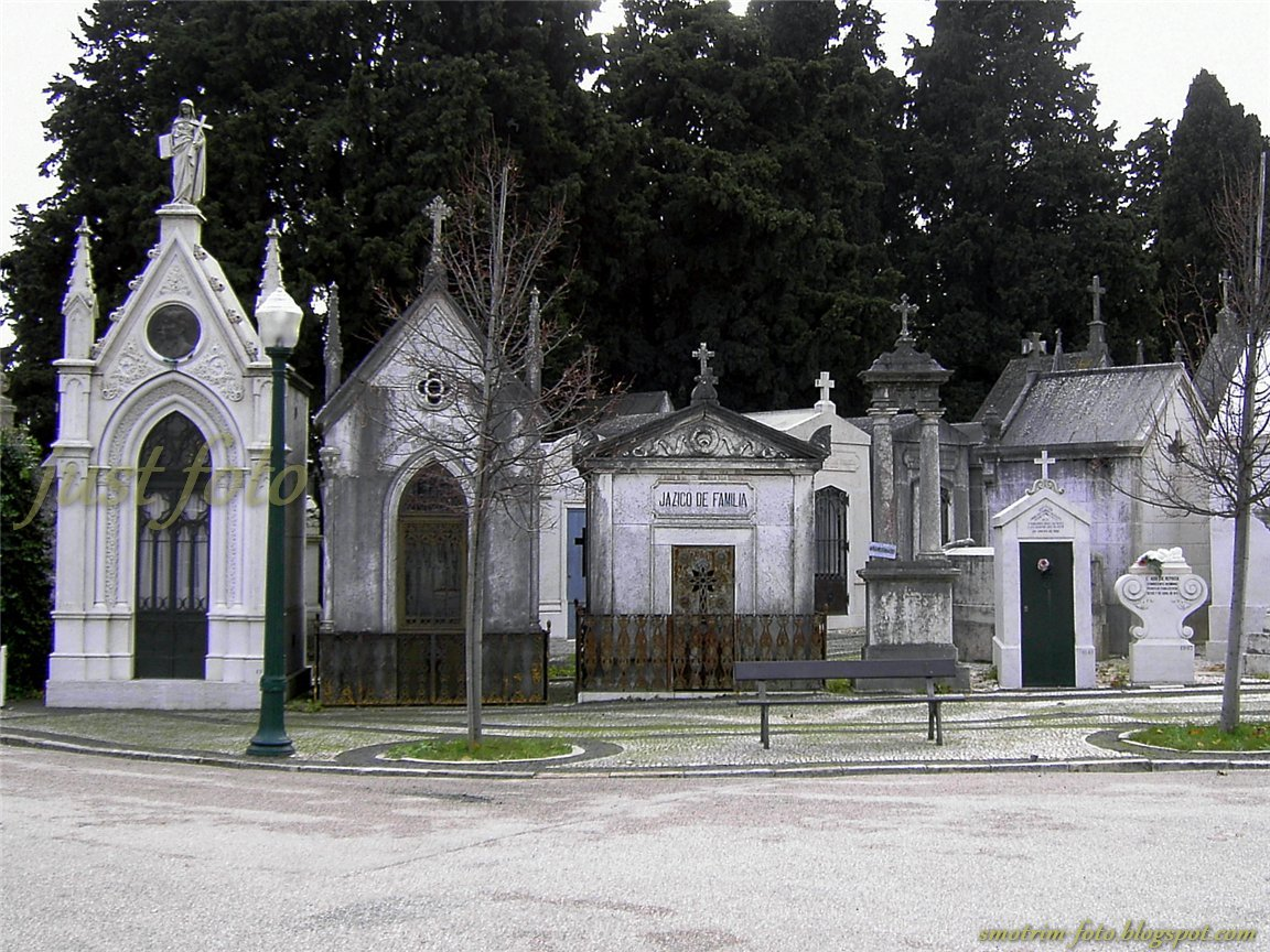 Историческое кладбище Семитериу душ Празереш фото