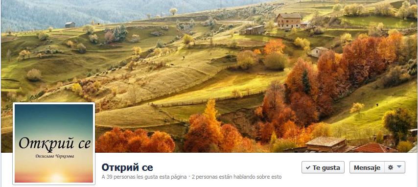 проект на Десислава - фейсбук