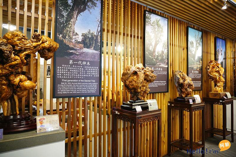 龍井景點,希諾奇檜木博物館-3