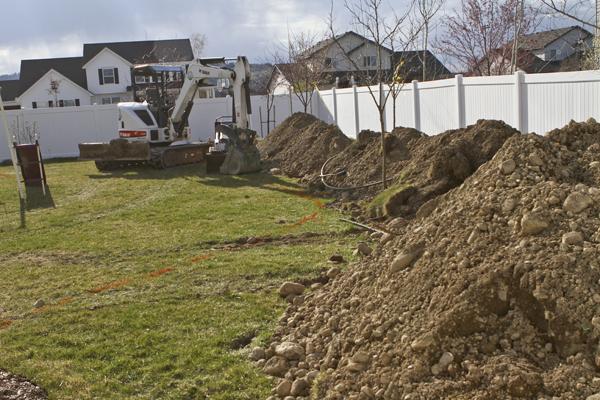 Quaking Aspen Root Barrier