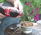 グラスに注ぐと凍る!フローズンコーラの作り方