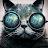 eduardo thomaz avatar image