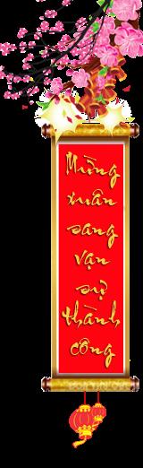 Long Nhãn Hưng Yên Giá Cả Rẻ Nhất Việt Nam