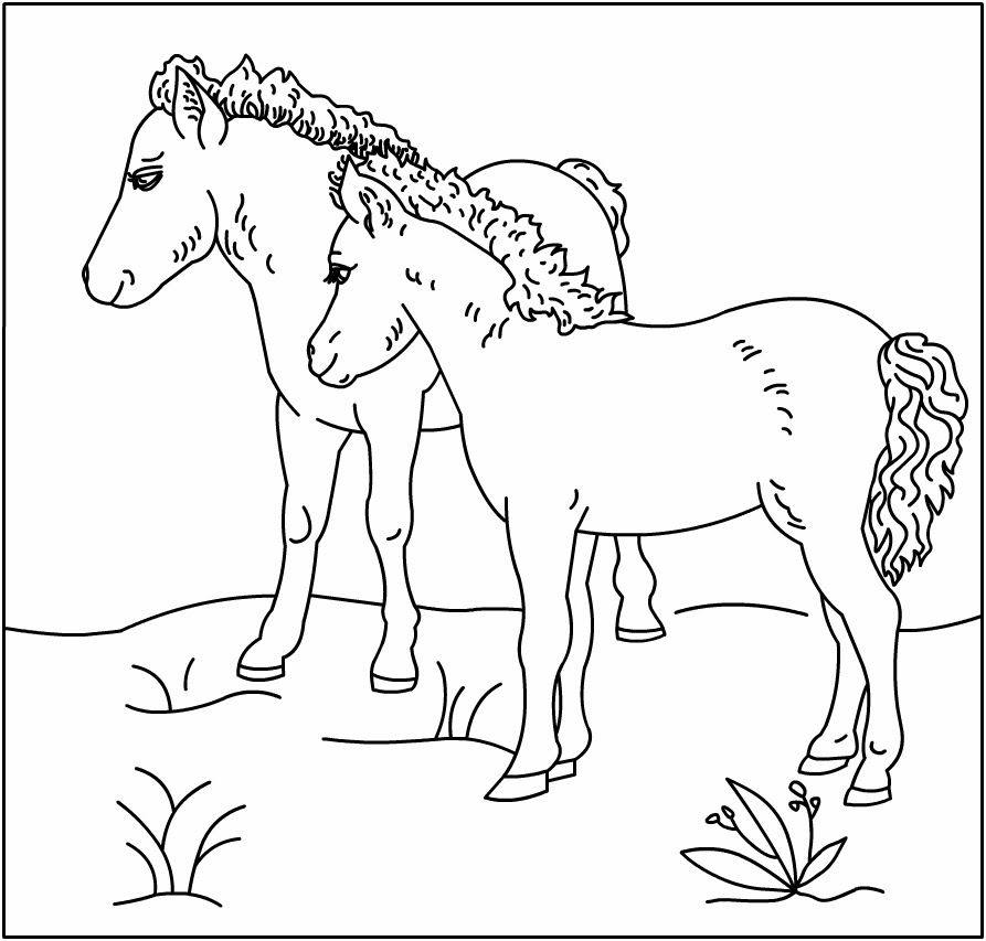 Horse coloring pages, sheets and pictures | 853x893
