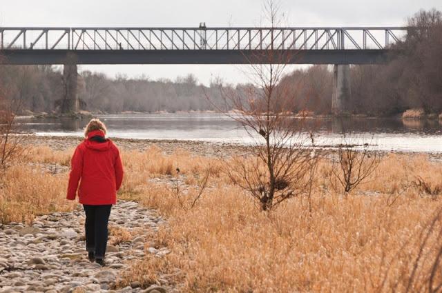 Spaziergang über die Rheininsel