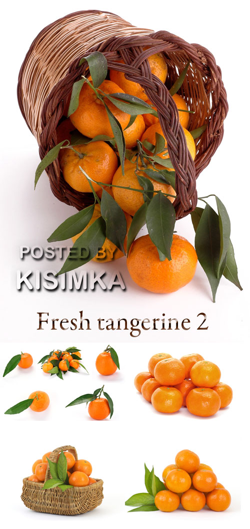 Stock Photo: Fresh tangerine 3