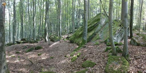 Des Ebersberger Felsenmeer ...