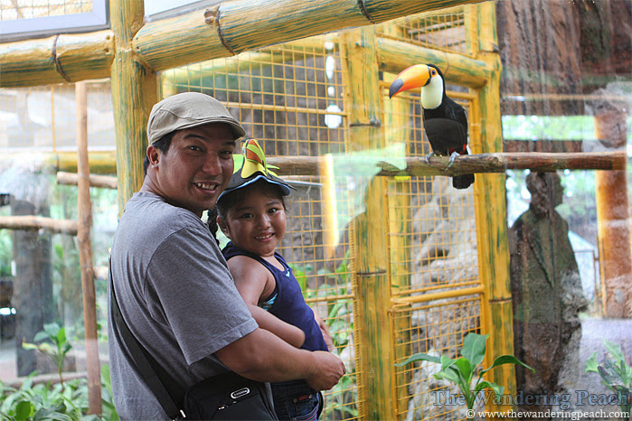 Avilon Zoo in Rizal