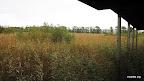 Piejūras pļava. Zemāks skats no putnu vērošanas torņa uz krasta pusi