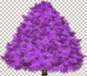 Purple_Undecorated.jpg