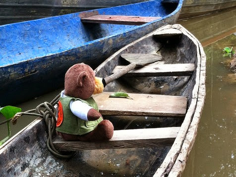 Tiny Bear Explores Big Questions in the Amazon! Explored the Amazon and its tributaries in a dugout canoe