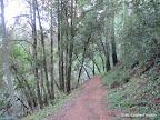Hamms Gulch Trail