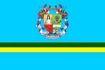 Bandera del municipio Naguanagua