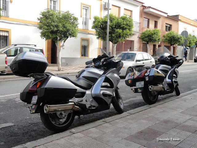 Marrocos 2012 - O regresso! - Página 3 DSC04565