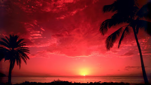 Sunset South Pacific.jpg